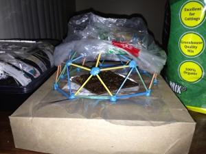 Model Dome